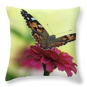 Painted Lady Butterfly On Zinnia Throw Pillow