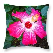 'painted Lady' Hibiscus Throw Pillow