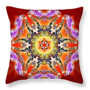 Painted Lotus Xvii Throw Pillow