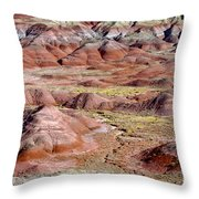 Painted Mounds Throw Pillow