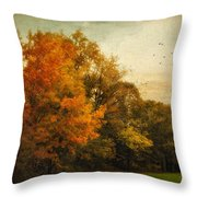Painted Path Throw Pillow