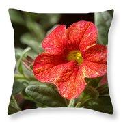 Painted Petals Throw Pillow