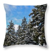 Painted Pines Throw Pillow