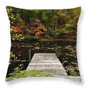 Painted Pond Throw Pillow