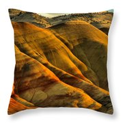 Painted Red And Gold Throw Pillow