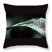 Painted Shades Of Green - 1 Throw Pillow
