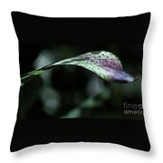 Painted Shades Of Green - 3 Throw Pillow