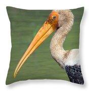 Painted Stork Mycteria Leucocephala Throw Pillow