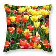 Painted Sunlit Tulips Throw Pillow
