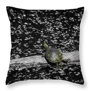 Painted Turtle In A Monochrome World Throw Pillow