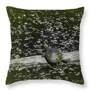 Painted Turtle Sleeping Like A Log Throw Pillow