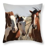Painted Wild Horses Throw Pillow