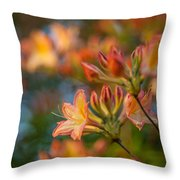 Painterly Rhodies Throw Pillow