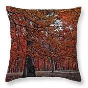 Painterly Style Autumn Trees Throw Pillow