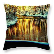 Painter's Box Throw Pillow