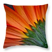Painters Brush Throw Pillow