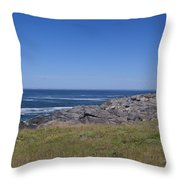 Painting The Cove Throw Pillow