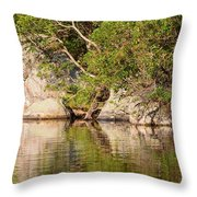 Painting White Rocks Throw Pillow