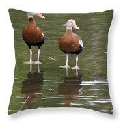 Pair Black-bellied Whistling-ducks Throw Pillow