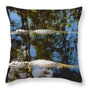Pair Of American Alligators Throw Pillow