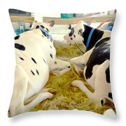 Pair Of Black And White Cows 3 Throw Pillow