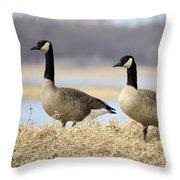 Pair Of Canadians Throw Pillow