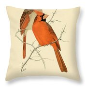 Pair Of Cardinals Throw Pillow