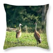 Pair Of Cranes Throw Pillow