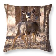 Pair Of Does Throw Pillow