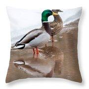 Pair Of Ducks Throw Pillow