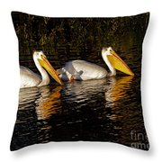 Pair Of Pelicans   #6935 Throw Pillow