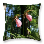 Pair Of Pink Lady Slippers  Throw Pillow