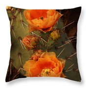 Pair Of Prickly Pear Cactus Blooms In The Sandia Foothills Throw Pillow