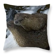 Pair Of River Otters   #1266 Throw Pillow