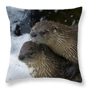 Pair Of River Otters   #1301 Throw Pillow