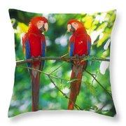 Pair Of Scarlet Macaws Throw Pillow