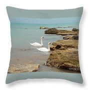 Pair Of Swans. Throw Pillow