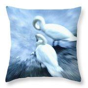Pair Of Swans Throw Pillow
