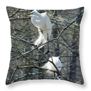 Paired Egrets At Lake Martin Louisiana Throw Pillow