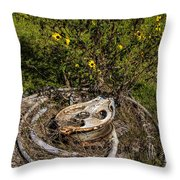 Palacios Texas Pulley Wire And Flowers Throw Pillow