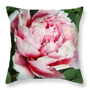 Pale And Dark Pink Peony Throw Pillow