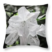 Pale Beauty Throw Pillow