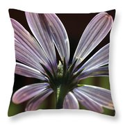 Pale Blue Flower Backlit Throw Pillow