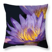 Pale Blue Yellow... Throw Pillow