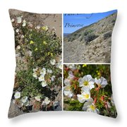 Pale Evening-primrose Throw Pillow
