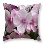 Pale Pink 3 Throw Pillow