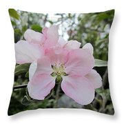 Pale Pink Crabapple Blossom Throw Pillow