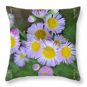 Pale Pink Fleabane Blooms With Decorations Throw Pillow