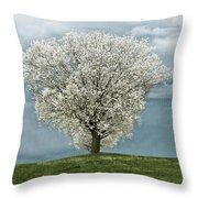 Pale White Tree On Cloudy Spring Day E83 Throw Pillow