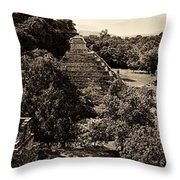 Palenque From The Jungle Panorama Sepia Throw Pillow